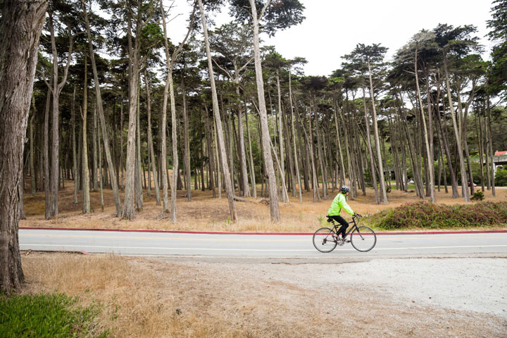 biking in the Presidio