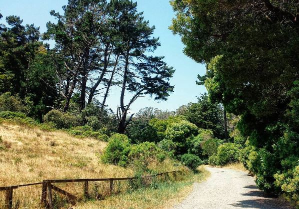 Celebrating National Trails Day in the Presidio