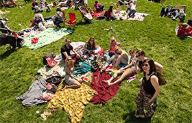 Best options presidio picnic